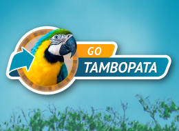 Go Tambopata website